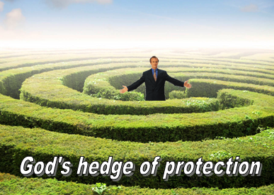 hedge-of-protection-sm